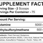 APTECH Glutamine & MSM Supplement Facts